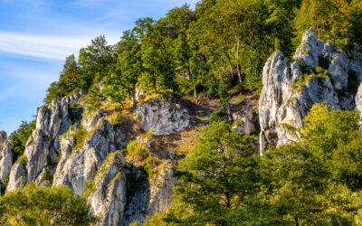 Jurassic limestone rocks and dense greenery of Prądnik Creek Valley